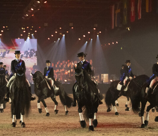 Subtopteam Friesian Proms 2020