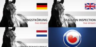 Livestream Hengstenkeuring 2021